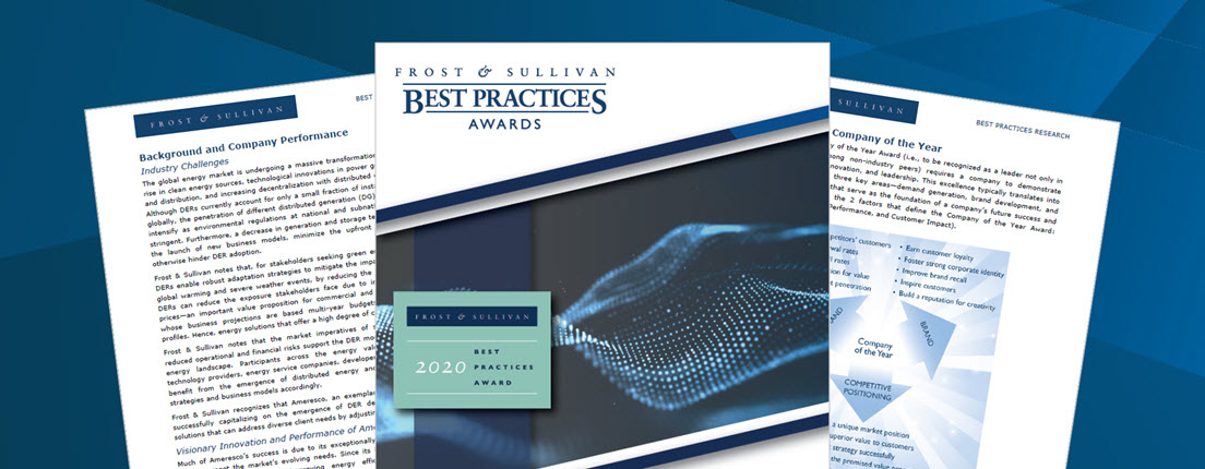 Screenshots of several pages of a 2020 Frost & Sullivan Best Practices Awards report